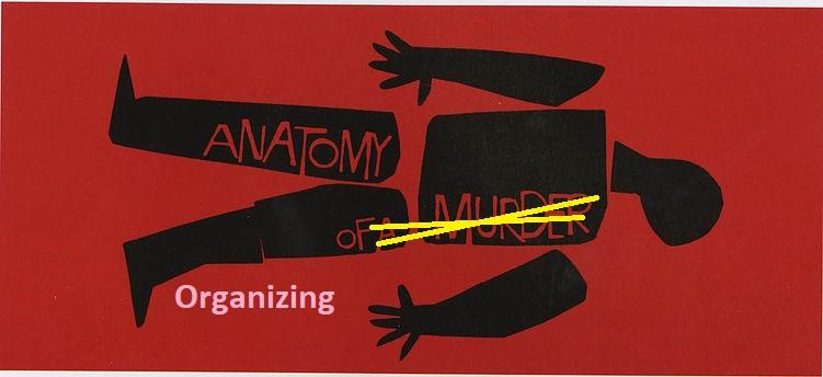 Anatomy of Organizing image